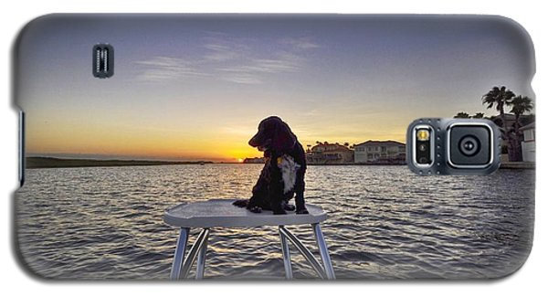 Spaniel At Sunset Galaxy S5 Case
