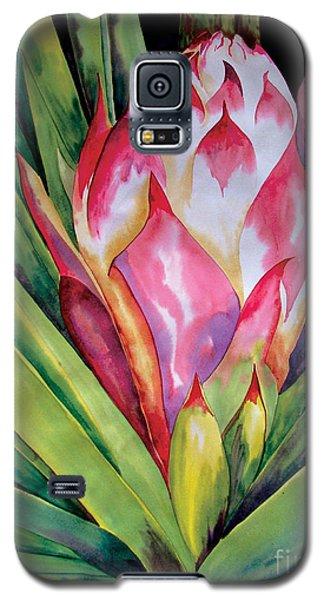 Spanish Dagger Iv Galaxy S5 Case
