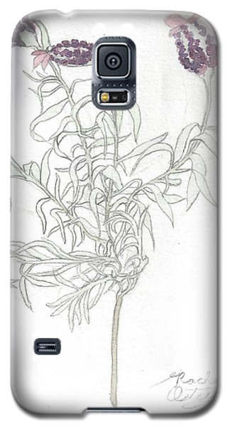 Spanish Lavender Galaxy S5 Case