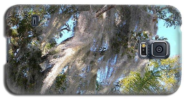 Spanish Moss Galaxy S5 Case