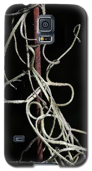Galaxy S5 Case featuring the photograph Spanish Moss On Wire by Richard Rizzo