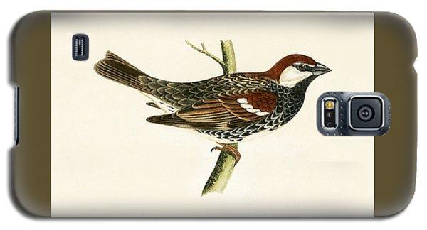 Spanish Sparrow Galaxy S5 Case