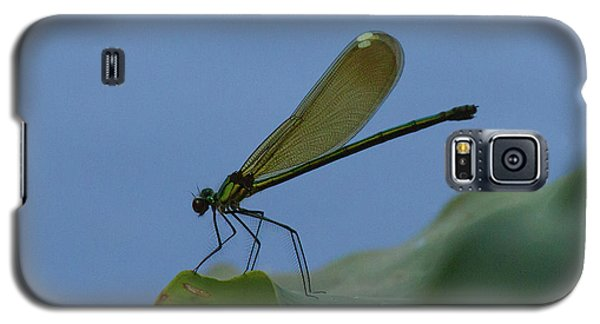 Sparkling Jewelwing #2 Galaxy S5 Case