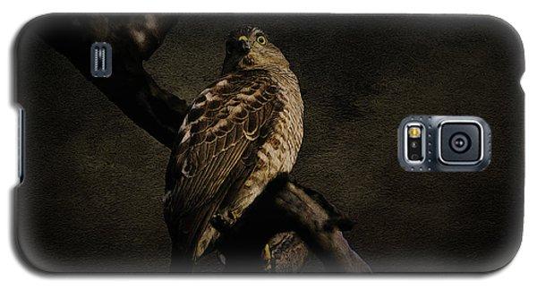 Sparrow Hawk Galaxy S5 Case by Manjot Singh Sachdeva