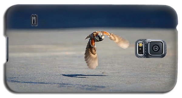 Sparrow On A Mission Galaxy S5 Case