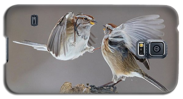 Galaxy S5 Case featuring the photograph Sparrows Fight by Mircea Costina Photography