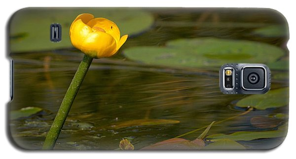 Galaxy S5 Case featuring the photograph Spatterdock by Jouko Lehto
