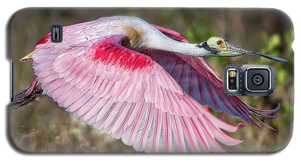 Spoonbill Winging It Galaxy S5 Case