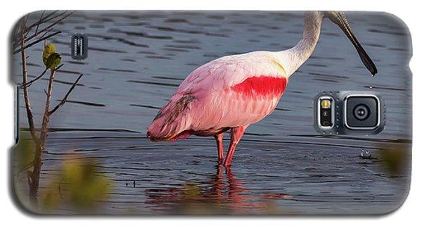 Spoonbill Fishing Galaxy S5 Case