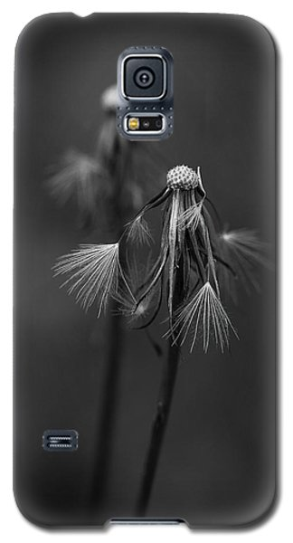Spent Wishes Galaxy S5 Case