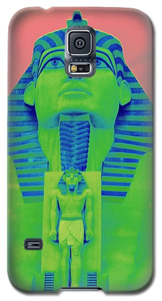 Sphinx And Pink Sky Galaxy S5 Case