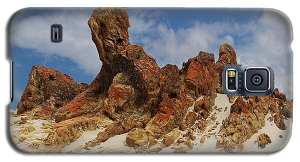 Sphinx Of South Australia Galaxy S5 Case by Stephen Mitchell