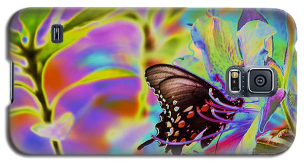Spicebush Swallowtail Butterfly Solorize Galaxy S5 Case by Donna Brown
