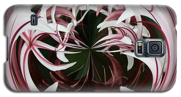 Spider Lily Orb Galaxy S5 Case by Bill Barber