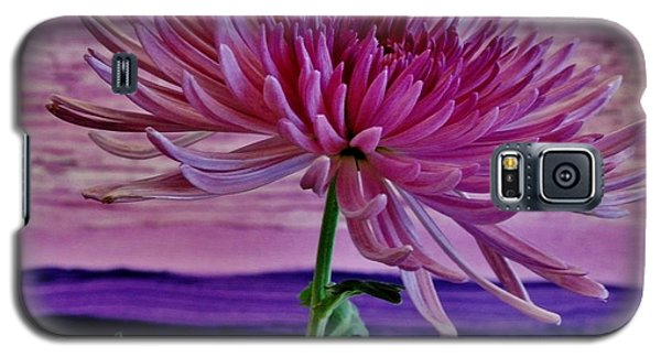 Galaxy S5 Case featuring the photograph Spider Mum With Abstract by Marsha Heiken