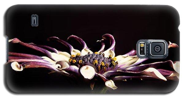 Spider White Galaxy S5 Case