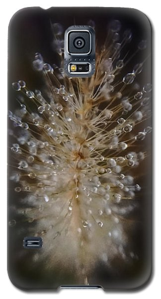 Spiked Droplets  Galaxy S5 Case