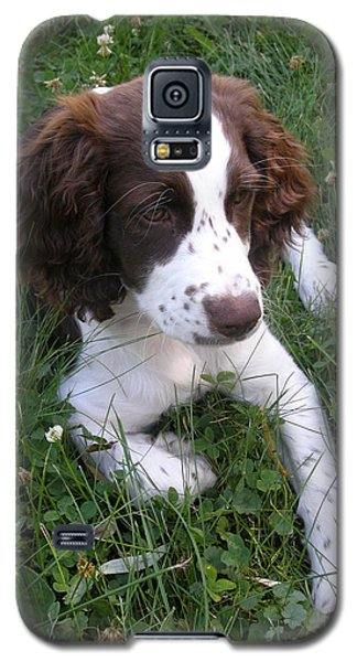 Galaxy S5 Case featuring the photograph Spinger Spaniel Pup by Angie Rea