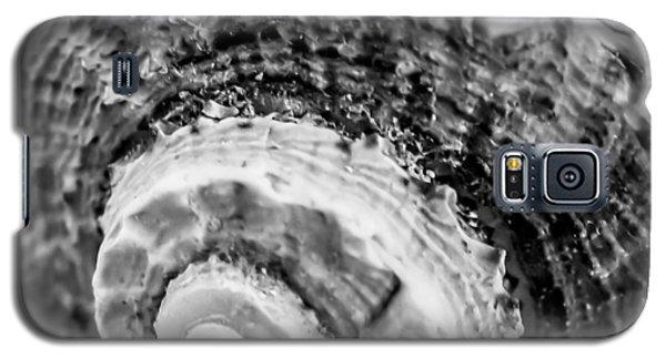 Spiral Crustacean Galaxy S5 Case