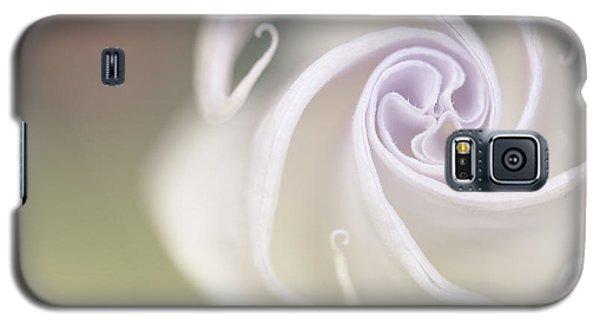 Trumpet Galaxy S5 Case - Spiral by Nailia Schwarz