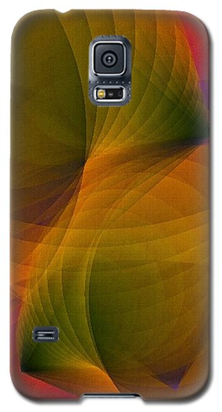 Spiraling Insight With Complicated Continuation Galaxy S5 Case by Susan Maxwell Schmidt