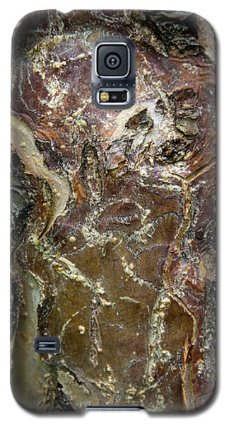 Spirit Of The Bark Galaxy S5 Case