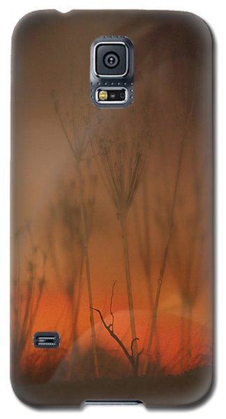 Spirit Of The Land Galaxy S5 Case