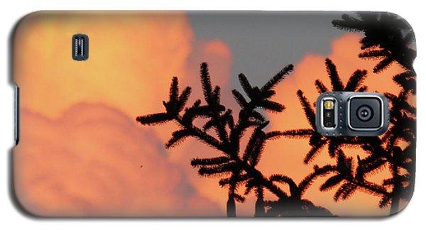 Spirit Pines Galaxy S5 Case