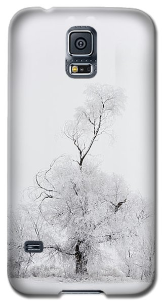 Galaxy S5 Case featuring the photograph Spirit Tree by Dustin LeFevre