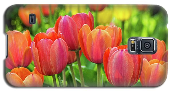 Galaxy S5 Case featuring the photograph Splash Of April Color by Bill Pevlor