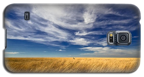 Splendid Isolation Galaxy S5 Case