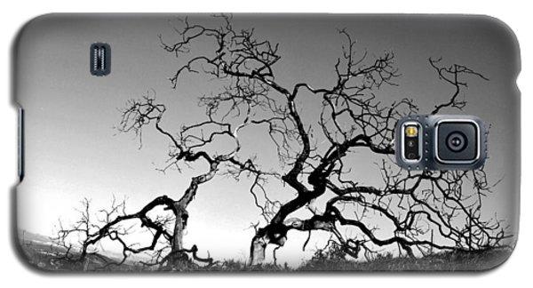 Split Single Tree On Hillside - Black And White Galaxy S5 Case