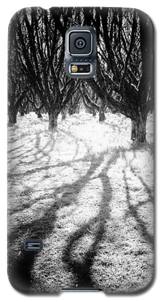 Spooky Forest Galaxy S5 Case