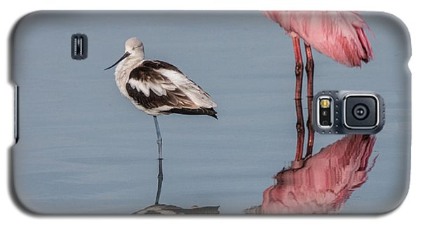 Spoonbill, American Avocet, And Reflection Galaxy S5 Case