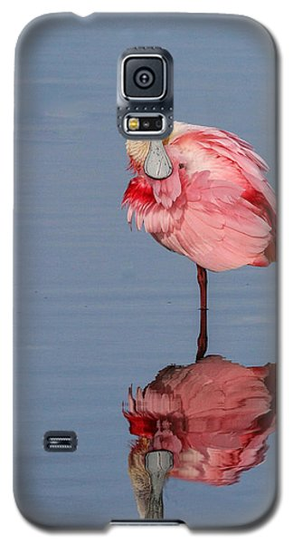 Spoonbill And Reflection Galaxy S5 Case