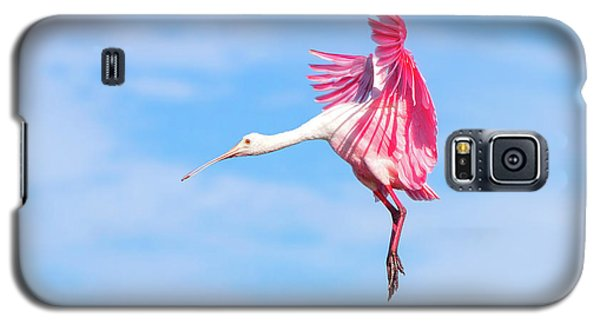 Spoonbill Ballet Galaxy S5 Case by Mark Andrew Thomas