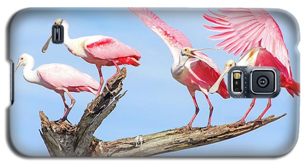 Spoonbill Party Galaxy S5 Case