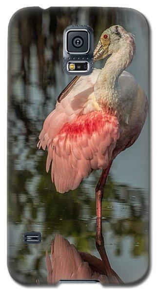 Spoonbill Resting Galaxy S5 Case