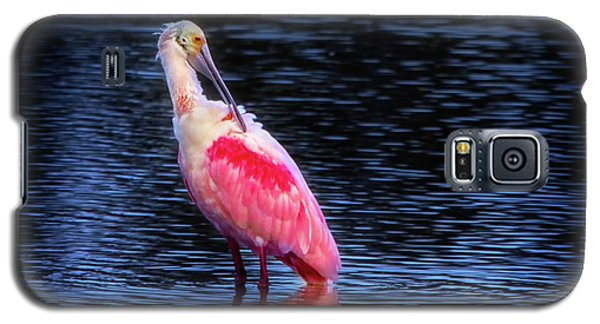Spoonbill Sunset Galaxy S5 Case by Mark Andrew Thomas