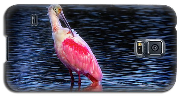 Spoonbill Sunset Galaxy S5 Case