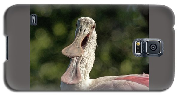 Spoonbill Talk Galaxy S5 Case