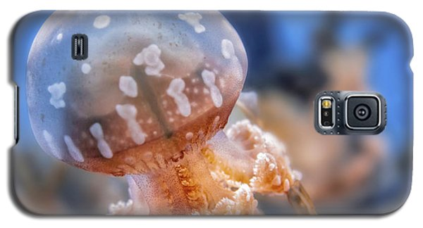 Galaxy S5 Case featuring the photograph Spotted Lagoon Jellyfish by Anthony Citro