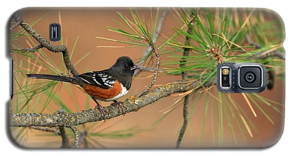 Spotted Towhee Galaxy S5 Case