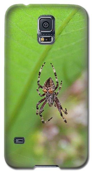 Spp-1 Galaxy S5 Case