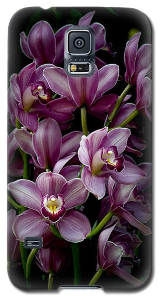 Spray Of Cymbidium Orchids Galaxy S5 Case