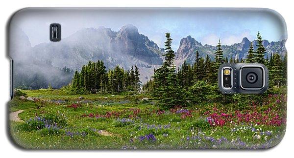Spray Park In Mount Rainier Galaxy S5 Case