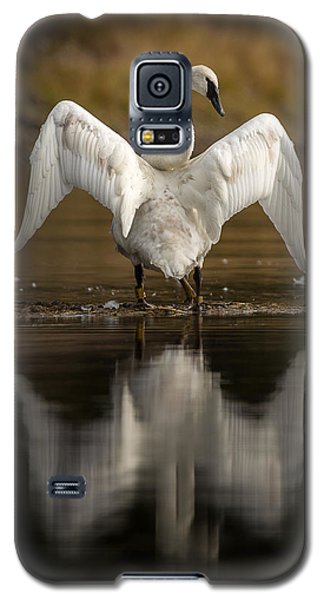 Showing Their Love // Yellowstone National Park  Galaxy S5 Case