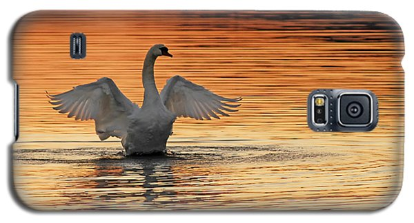 Spreading Her Wings In Gold Galaxy S5 Case
