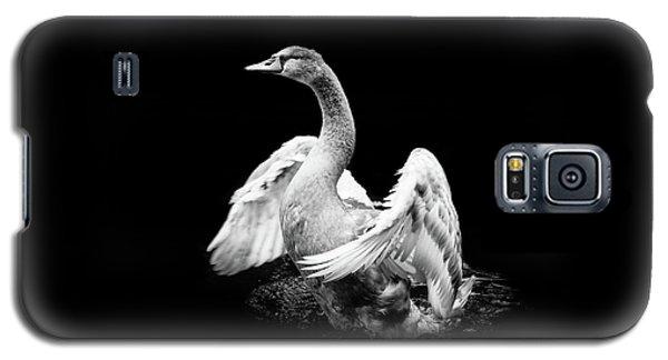 Spreading Galaxy S5 Case
