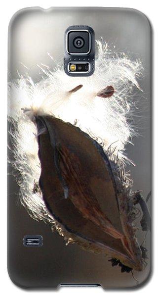Spreading Seeds IIi Galaxy S5 Case